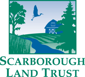 SLT-Logo